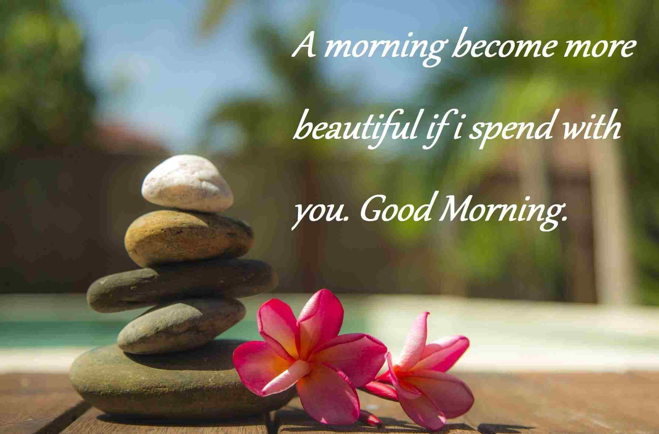 55 Good Morning Messages Images Pictures List Bark
