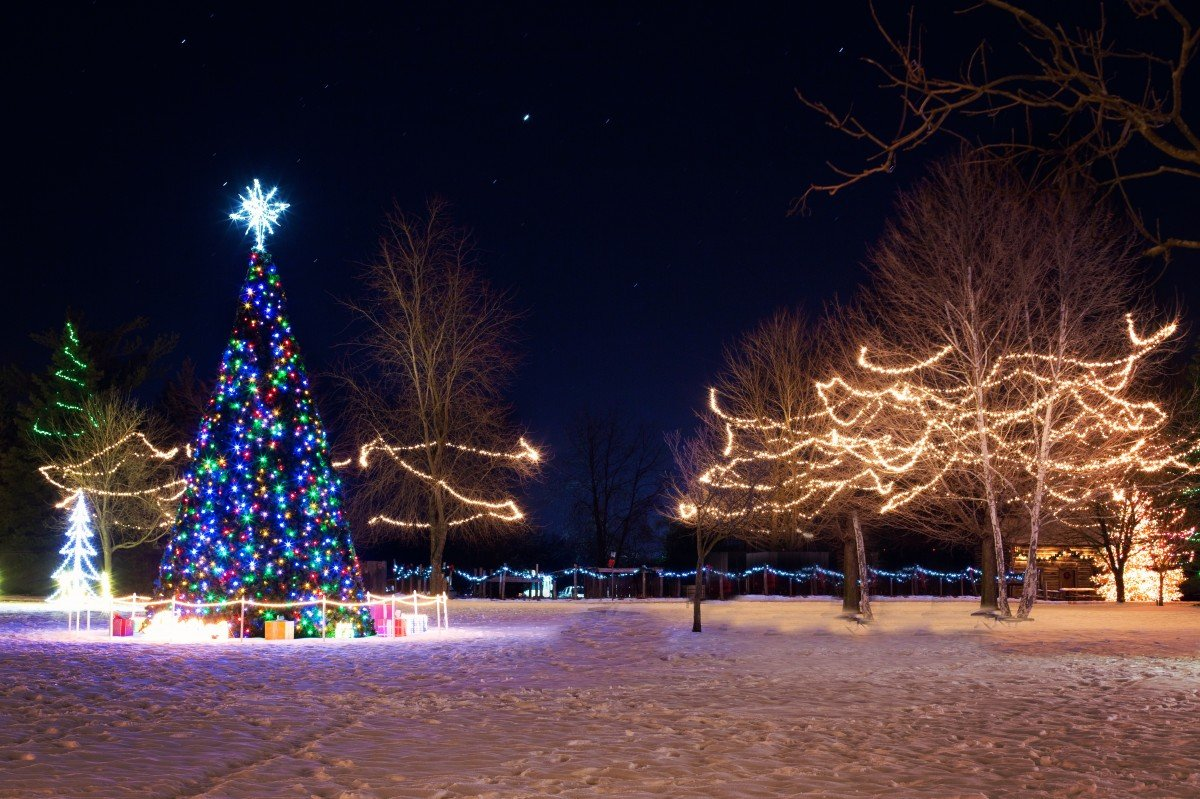 Christmas Town Xmas Tree Winter