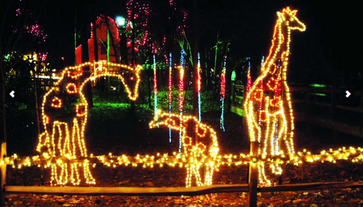 Xmas Animal Lights