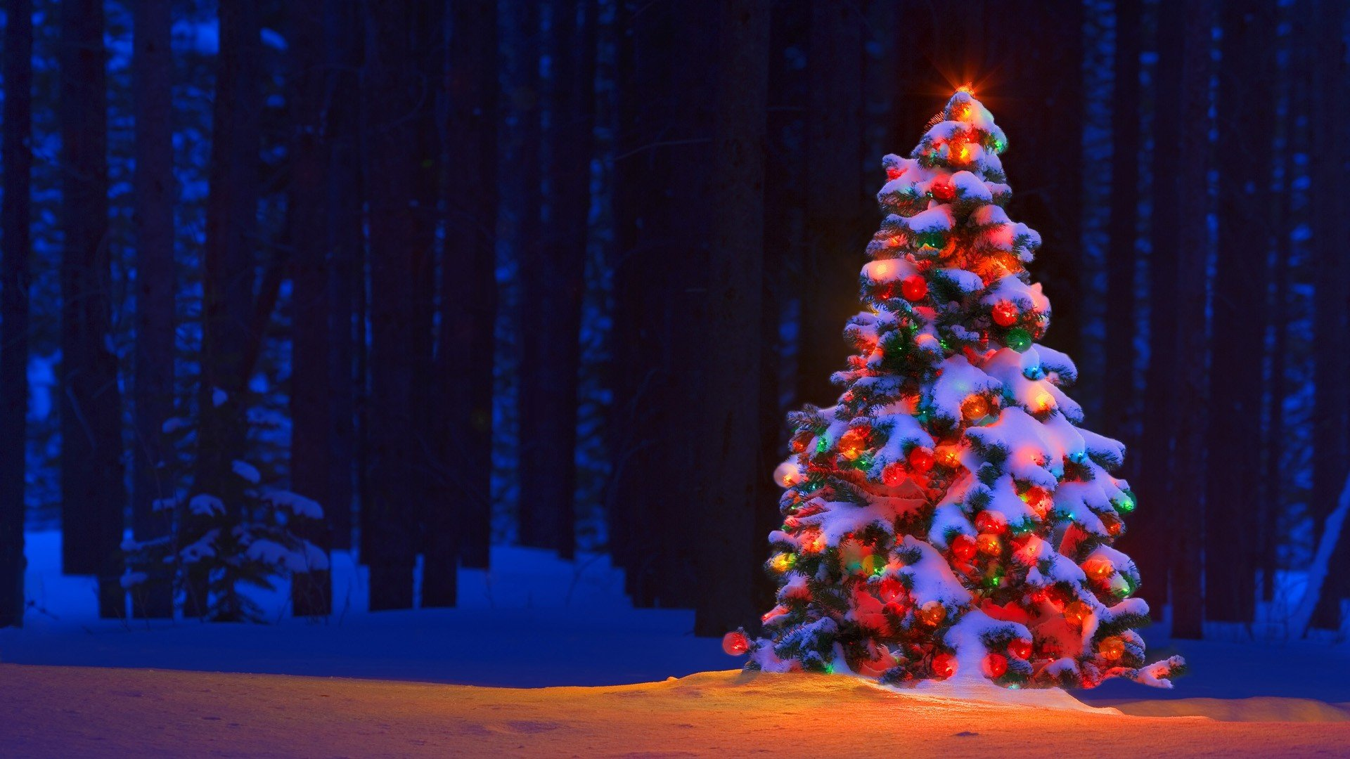 Christmas Tree Decorations Wallpapers