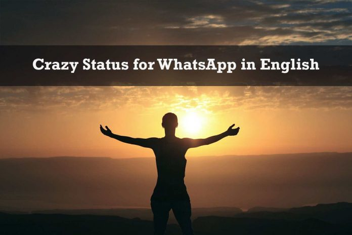 Crazy Status for WhatsApp in English