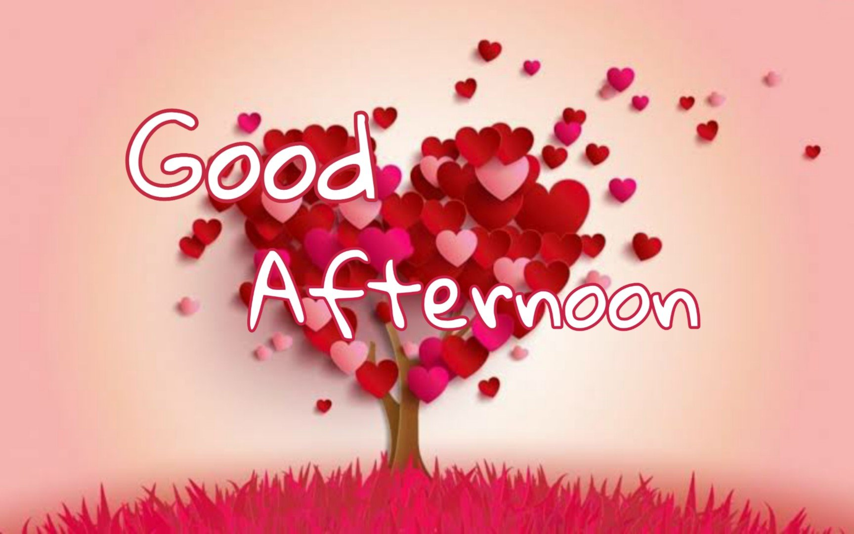50+ Good Afternoon SMS Wishes, Messages with Images