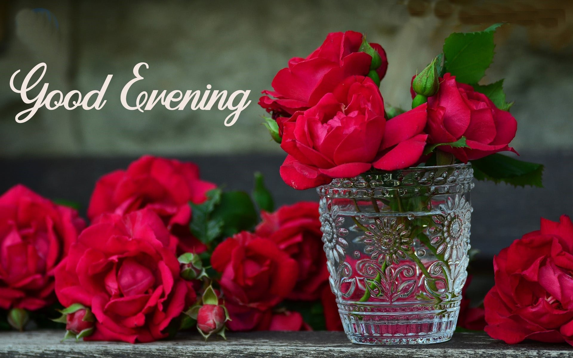 Good Evening SMS Text