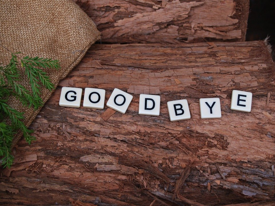 Goodbye My Lover