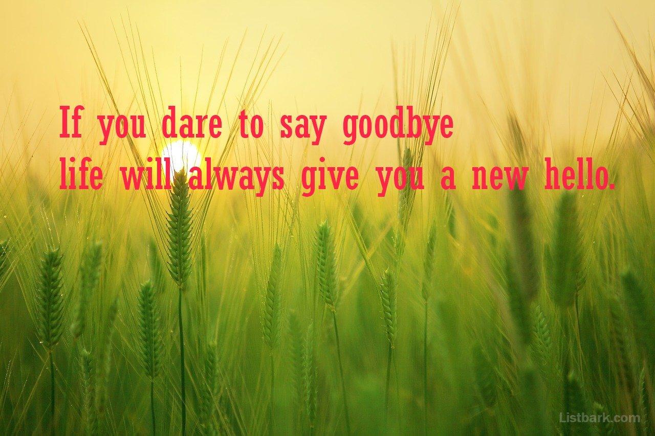 Goodbye Wishes For Instagram