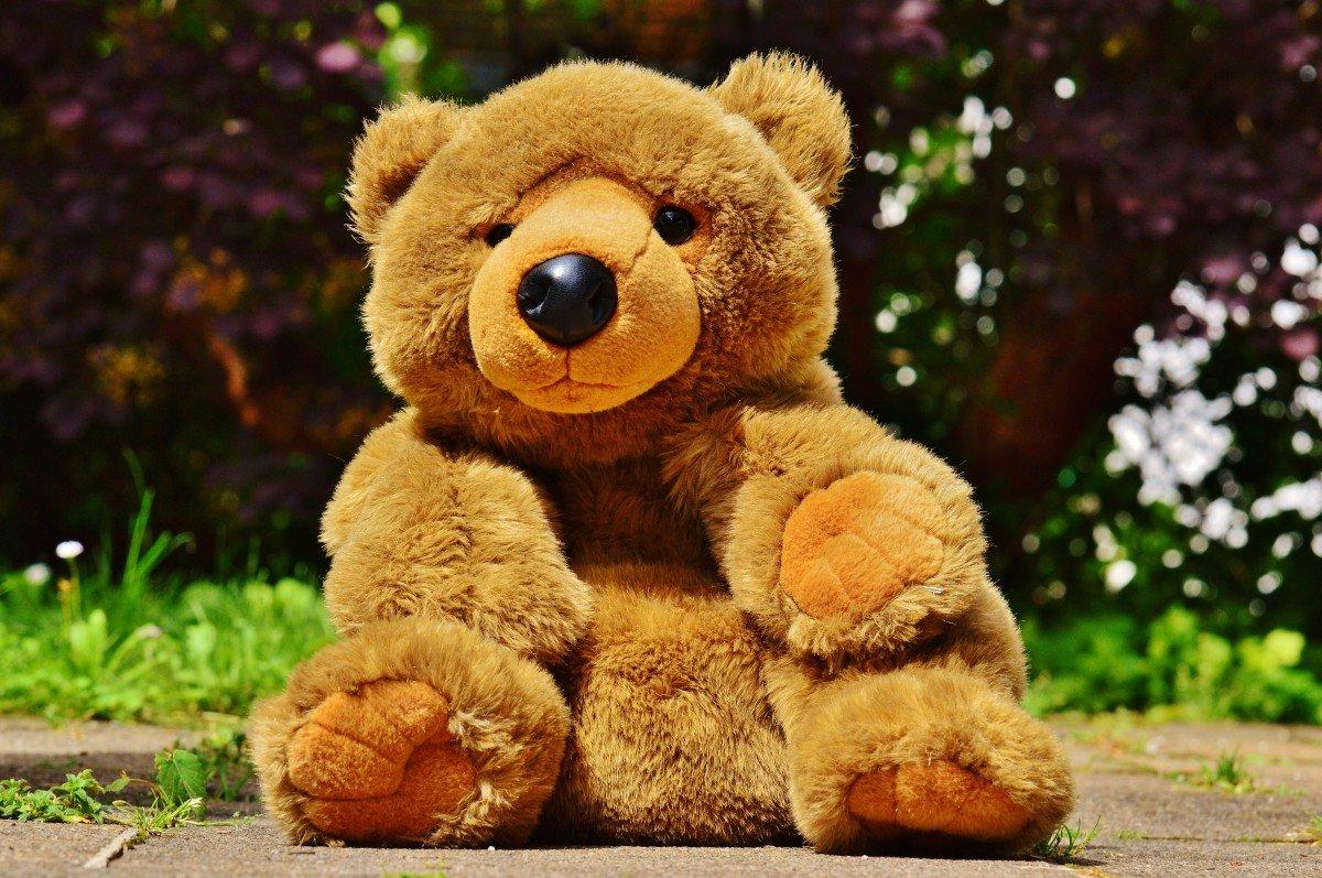 Teddy Bears For Valentine