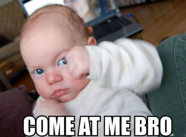 Funny Boxer Baby Photo