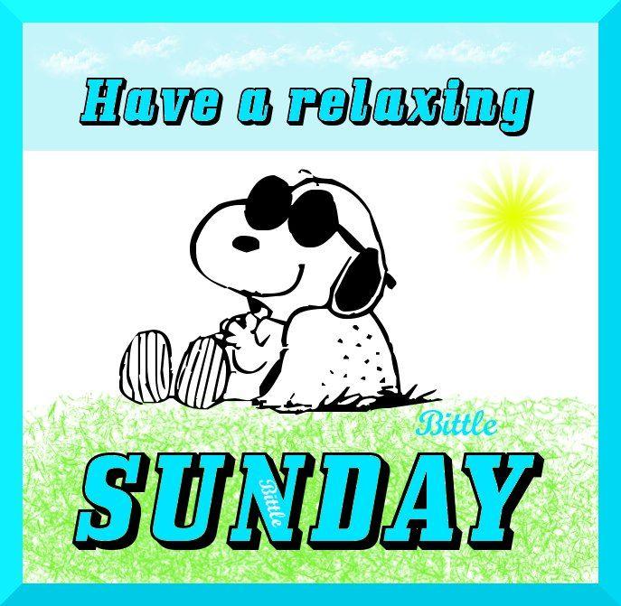 Funny Happy Sunday