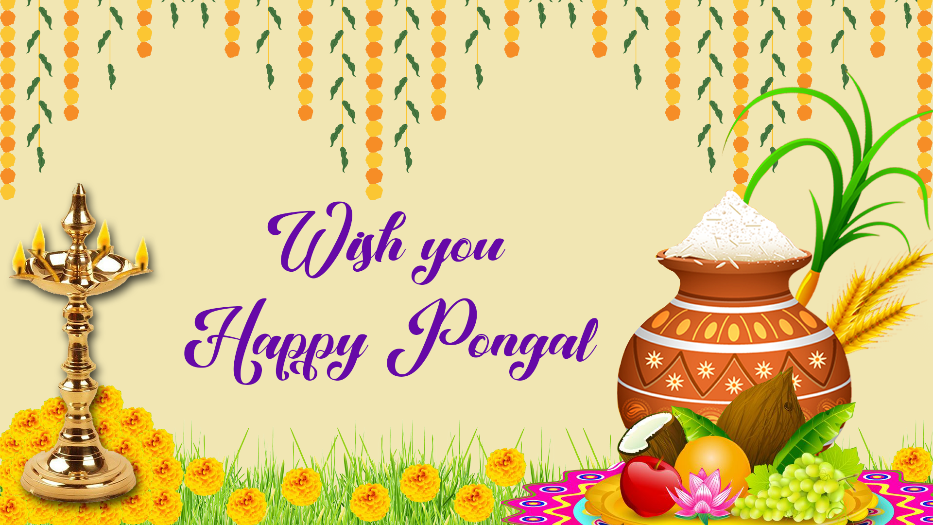 Happy Pongal Pictures