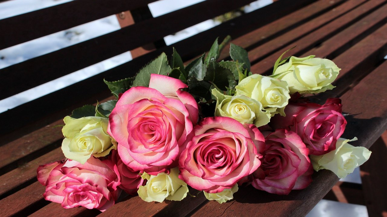 Happy Rose Day Couple Images