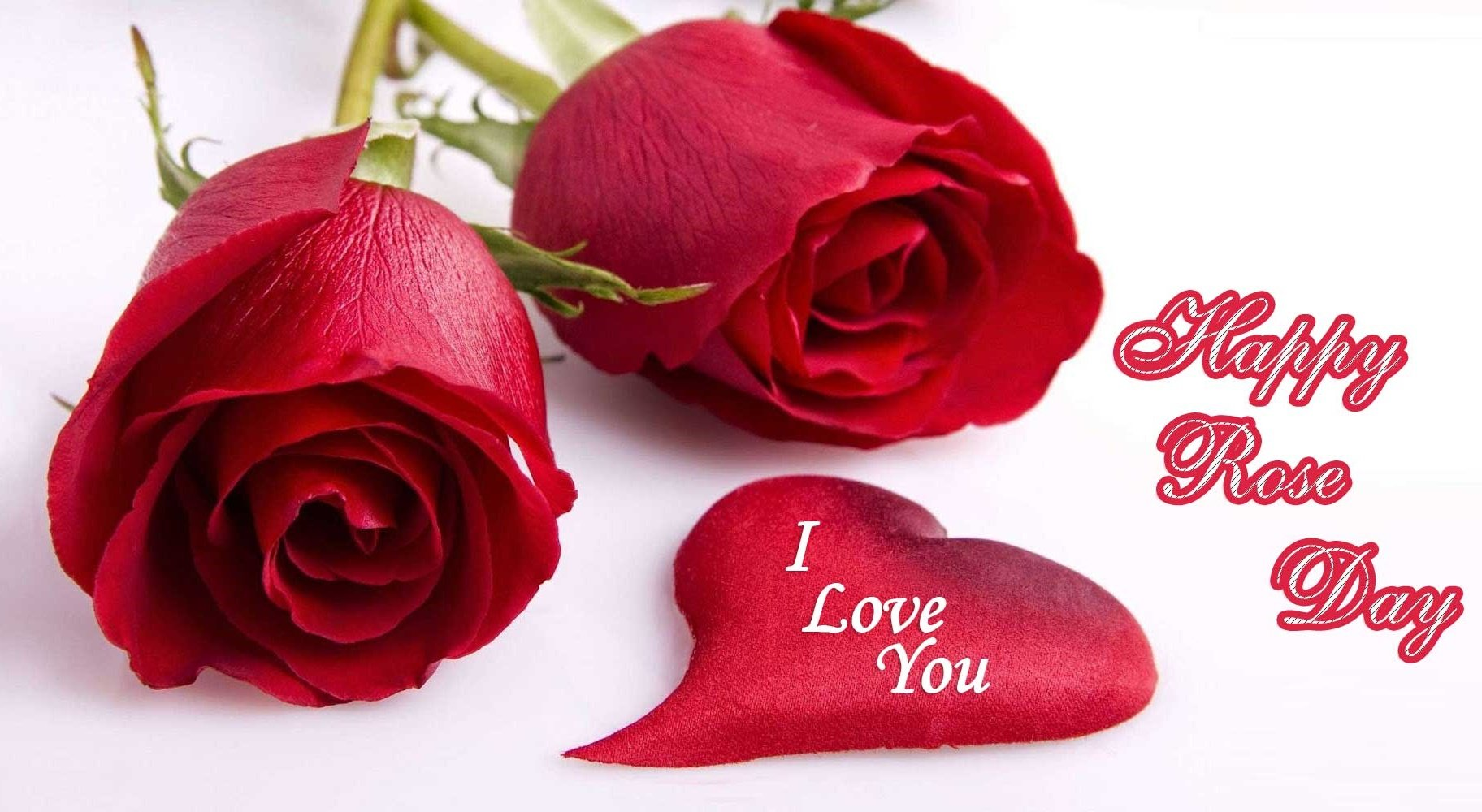 Happy Rose Day Greeting Card Images