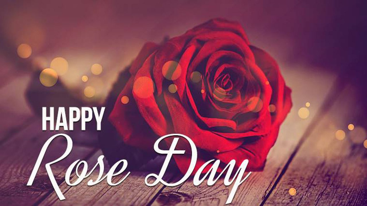 50 Happy Rose Day Images Wallpapers Photos 2020 List Bark