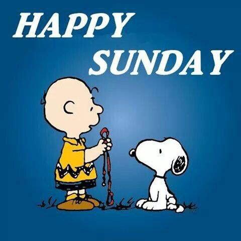 Happy Sunday Funny Photo