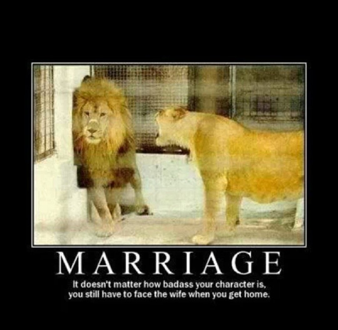 Hilarious Marriage