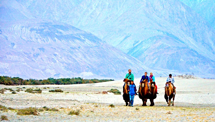 Nubra Valley Ladakh