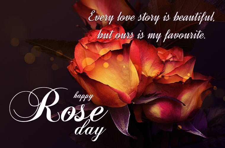 Rose Day HD Wallpaper Download