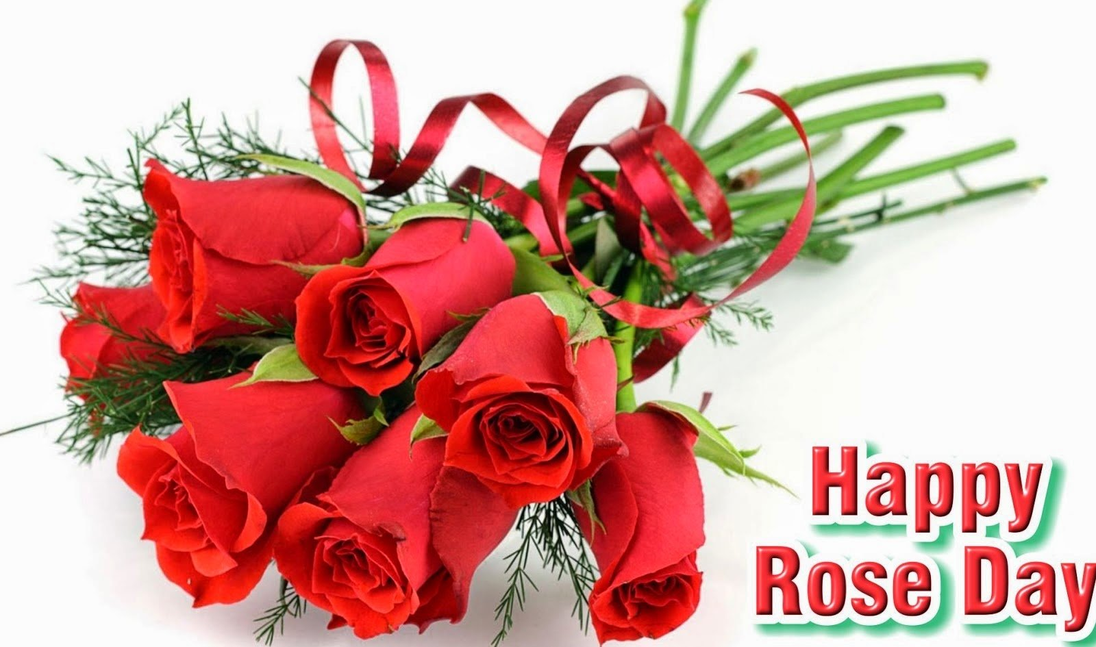 Rose Day Photo Gallery