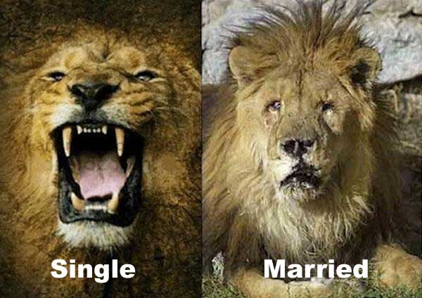 Single Vs Married Funny
