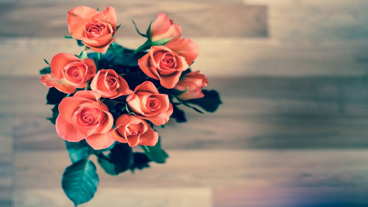 World Rose Day Images