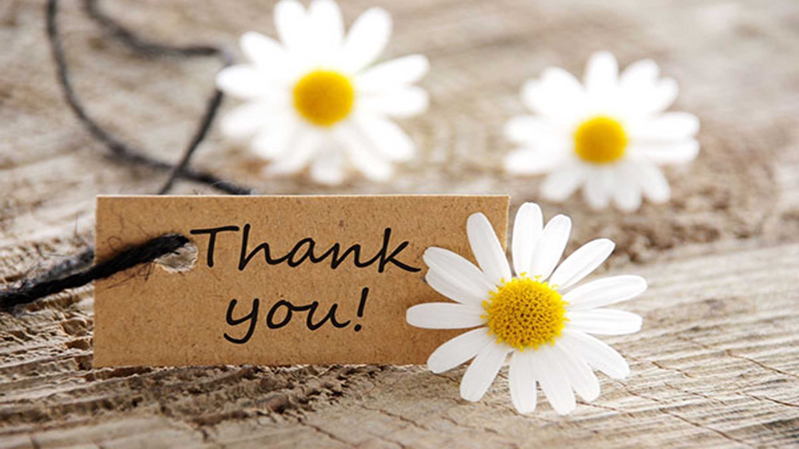 50 Thank You Quotes to Your Express Gratitude