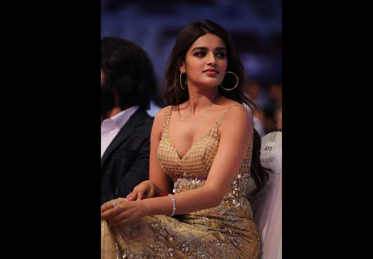 Nidhhi Agerwal Spicy Images