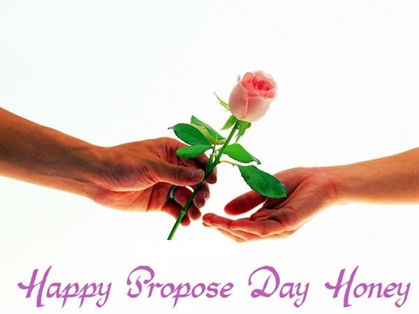 Propose Pictures Love
