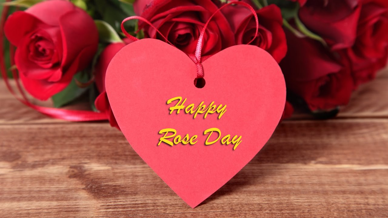 Rose Day Special Wishes