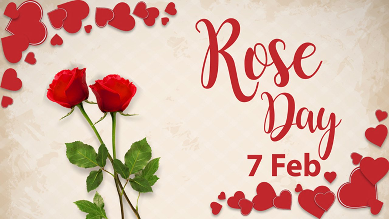 Rose Day Status For Whatsapp