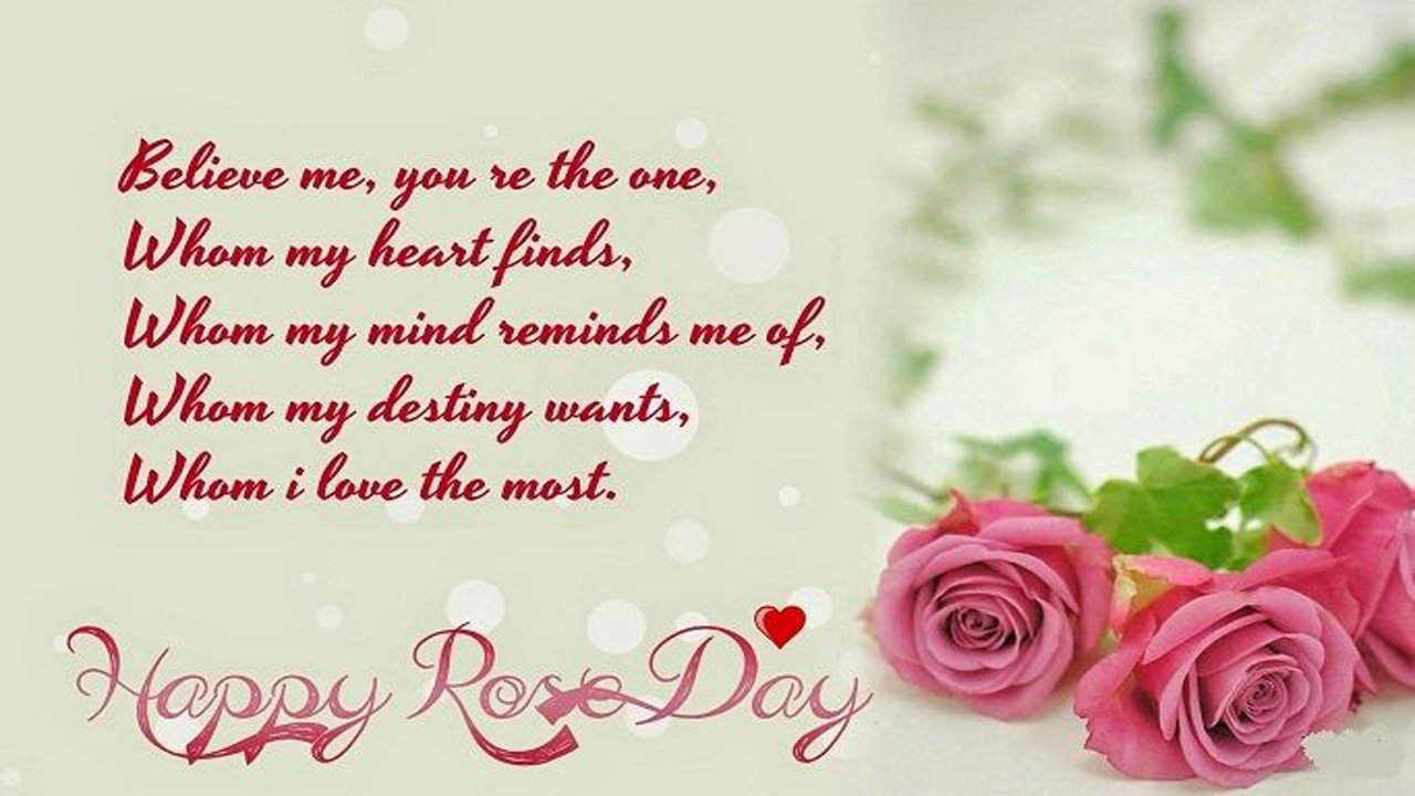 Rose Day for Boyfriend