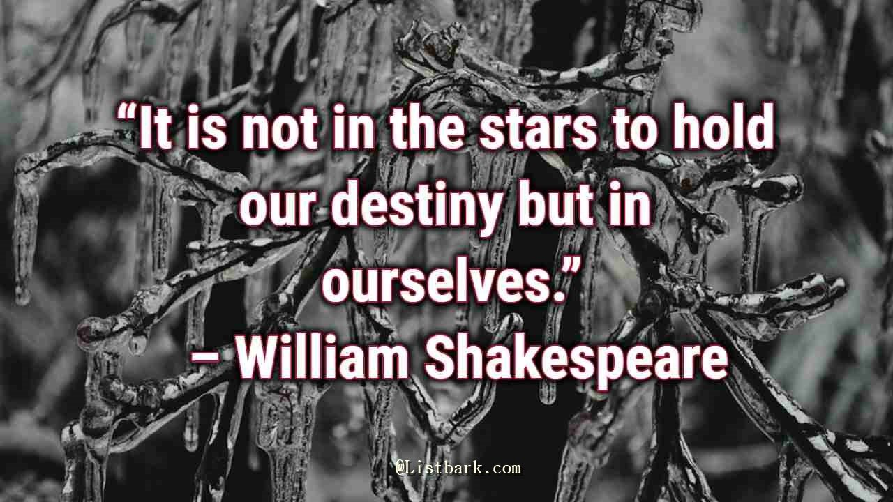Shakespeare Quotes on Life