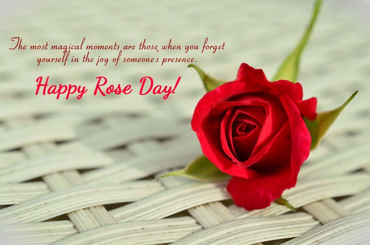 Wishes On Happy Rose Day