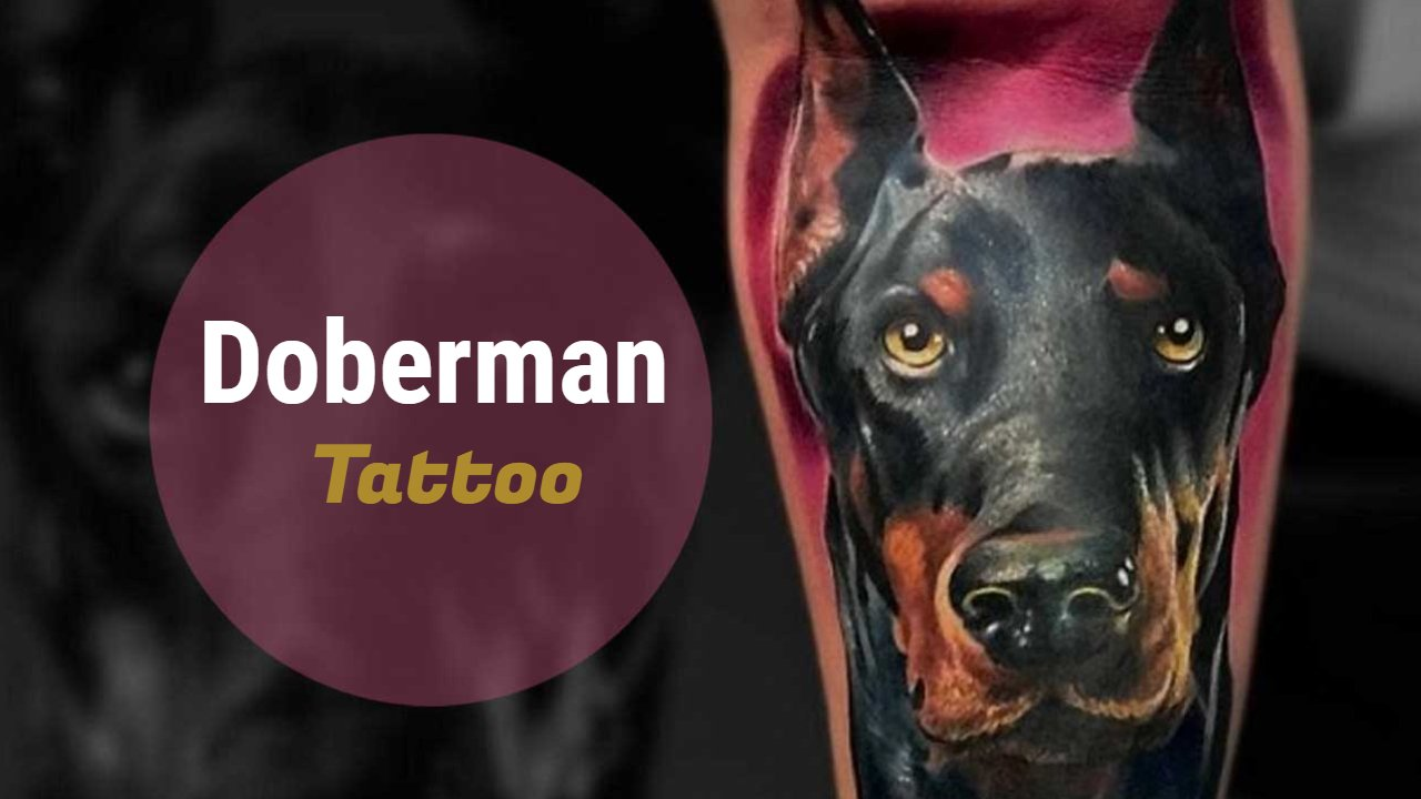 15 Stylish Doberman Tattoo Designs Images