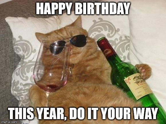 Drunk Cat Birthday Meme