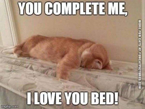 Funny I Love You Bed Meme