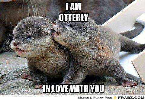 Funny Love Meme Image