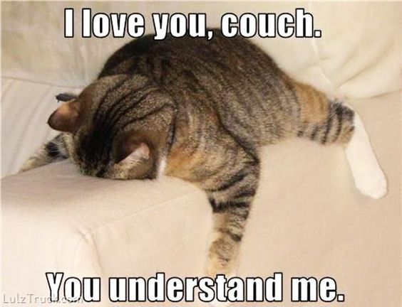 I Love You Couch You Understand Me Meme