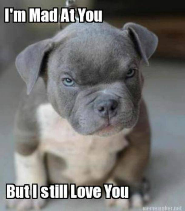 I'am mad at you but i still love you