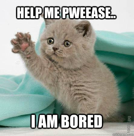 Cat Say Help Me Pweease I Am Bored Funny Bored Meme Image