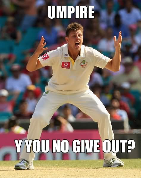 Funny Cricket Meme Umpire Y You No Give Out Image