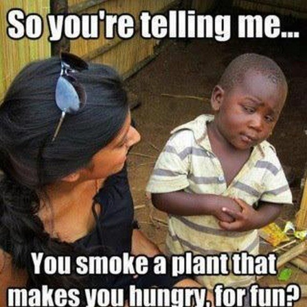 So You Are Telling Me You Smoke A Plant That Makes You Hungry For Fun Funny Bored Meme Image