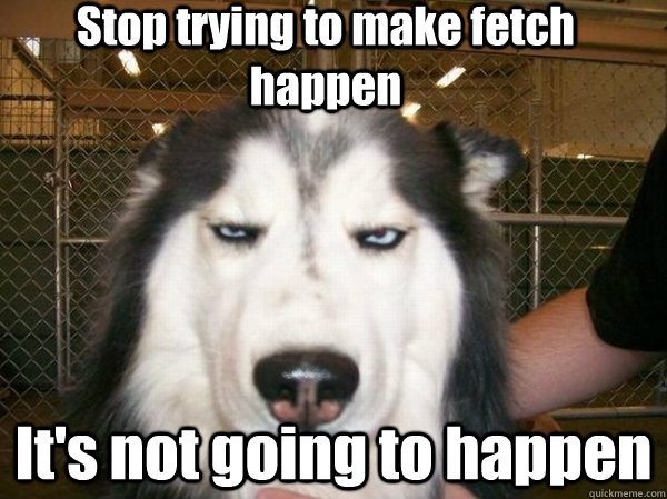 Stop Trying To Make Fetch Happen It's Not Going To Happen Funny Bored Meme Picture