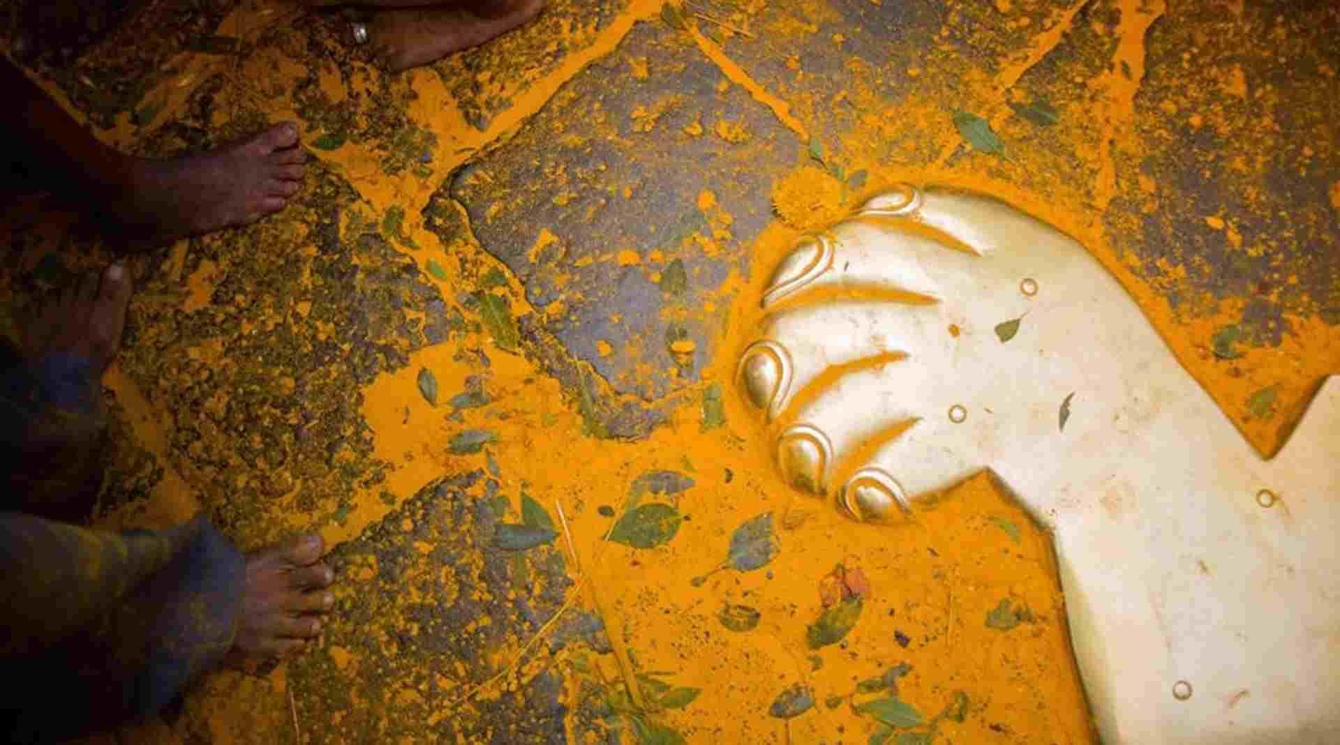 Turmeric India Festival