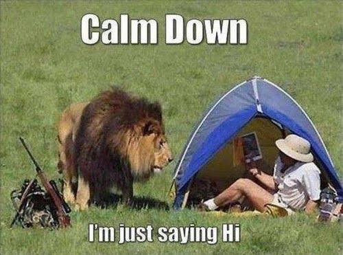 Calm Down Funny Picture