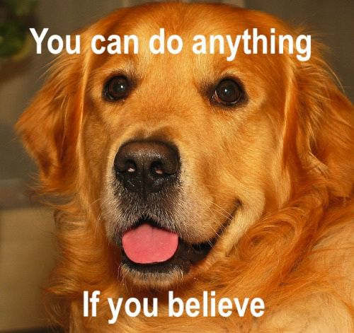 Believe in Yourself You Can Do It Memes