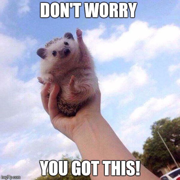 You Got This , Don't worry!