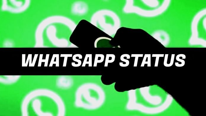 whatapp about