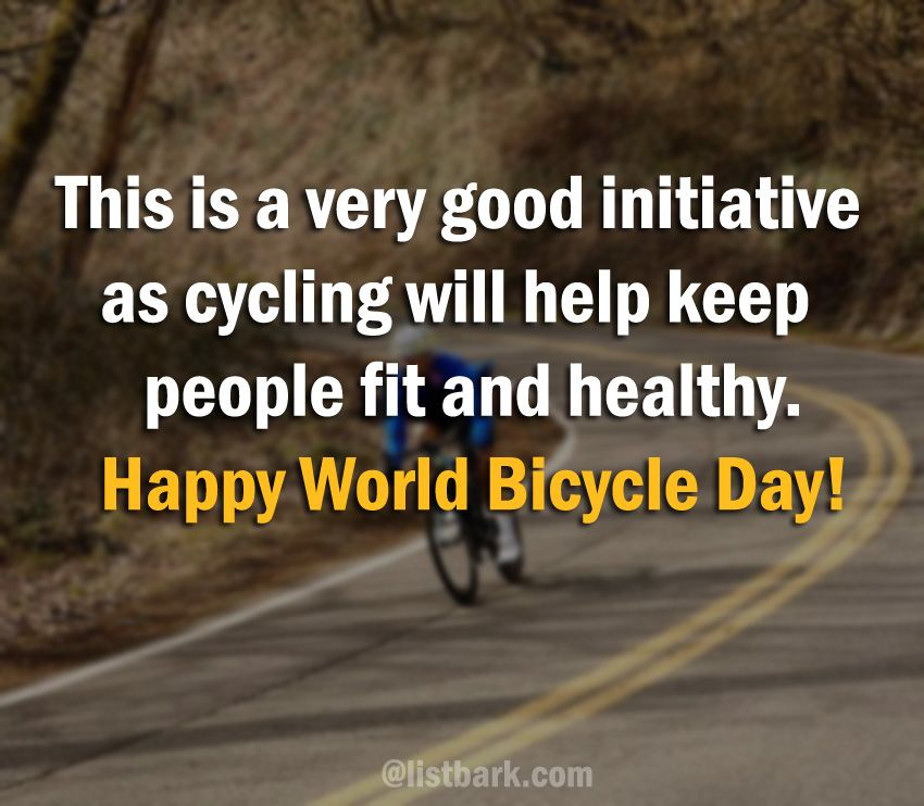 bicycle quotes and sayings