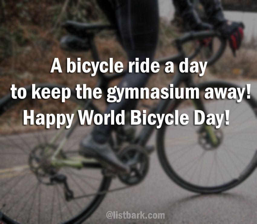 bike riders quote